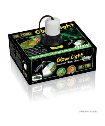 GLOW LIGHT petit support...