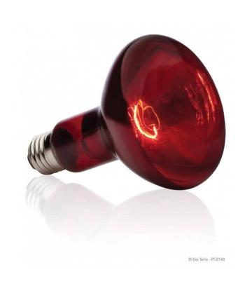 BASKING SPOT lampe...
