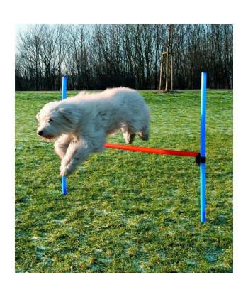 TRIXIE Dog Activity...