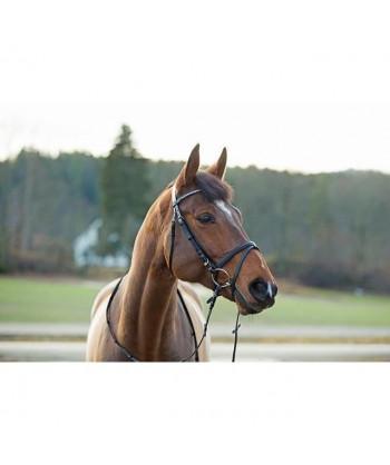 HORZE Bridon pour chevaux...